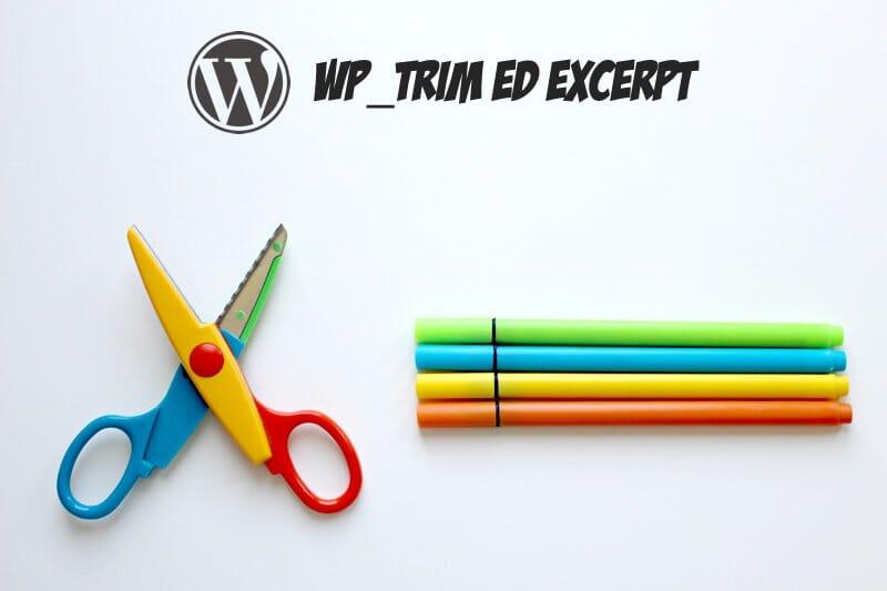 Come stabilire quali caratteri dell'excerpt di un post Wordpress vuoi mostrare.